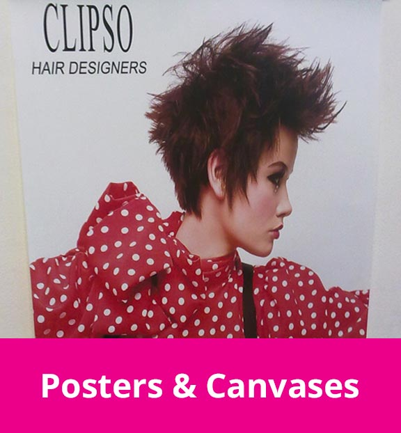 Posters & Canvases